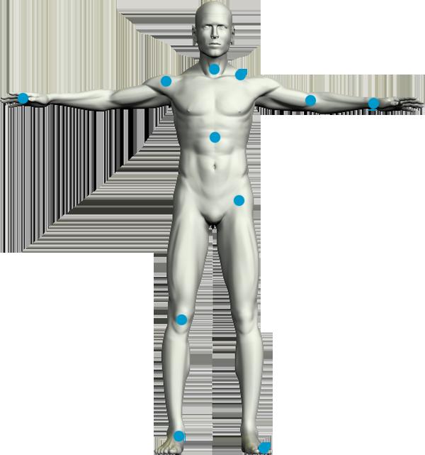 8 curiosidades del cuerpo humano | wereverwero